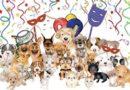 Os pets também curtem o carnaval?